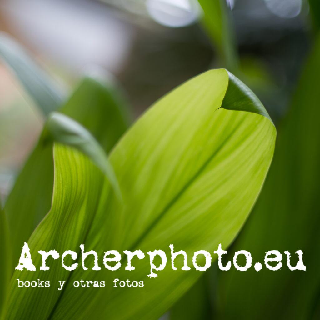 Interludio verde, 2021 por Archerphoto, fotógrafo para redes sociales